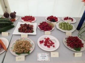 Fruit entries